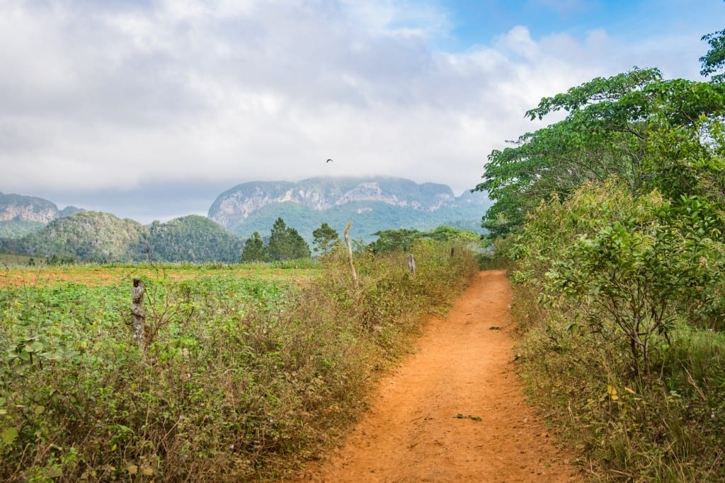A dirt path and mountains in the background.