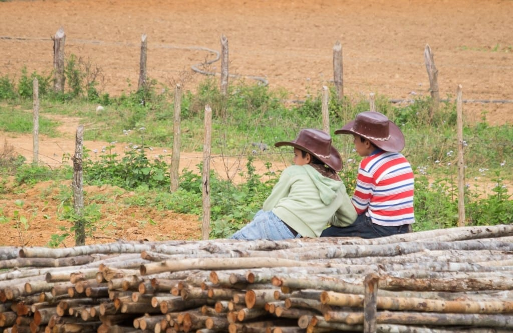 Two boys, around 10 years old, sitting on the stacks of wood, each wearing cowboy hats and facing away from the camera (I give kids privacy).